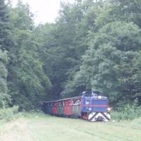Úzkorozchodná lokomotiva přijiždí do stanice Balnica