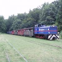 Úzkorozchodná lokomotiva tahne vagony do stanice Balnica