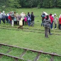 Poláci krmí koně a čumí na koně ve stanici Balnica