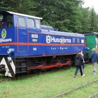 Lokomotiva ve stanici Balnica