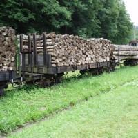 Úzkorozchodné železniční vozy na dřevo
