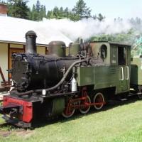 Parní úzkorozchodná lokomotiva