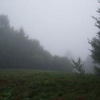 Cesta na Okraglík v dešti
