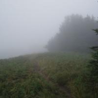 Cesta na Okraglík v dešti a mlze