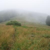 Polonina cestou na Okraglík v dešti a mlze