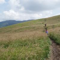 Cestou na Tarnicu